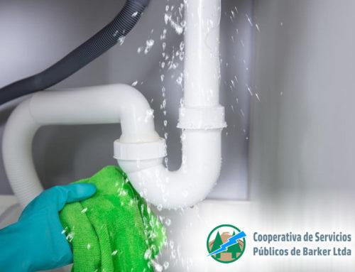 ¿Cómo detectar fugas de agua en su domicilio?